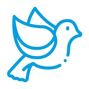 icon piccioni
